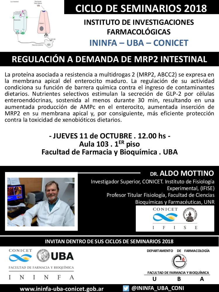 SEMINARIO ININFA-DTO FARMACOLOGÍA 11 de octubre de 2018 . Dr. Aldo Mottino